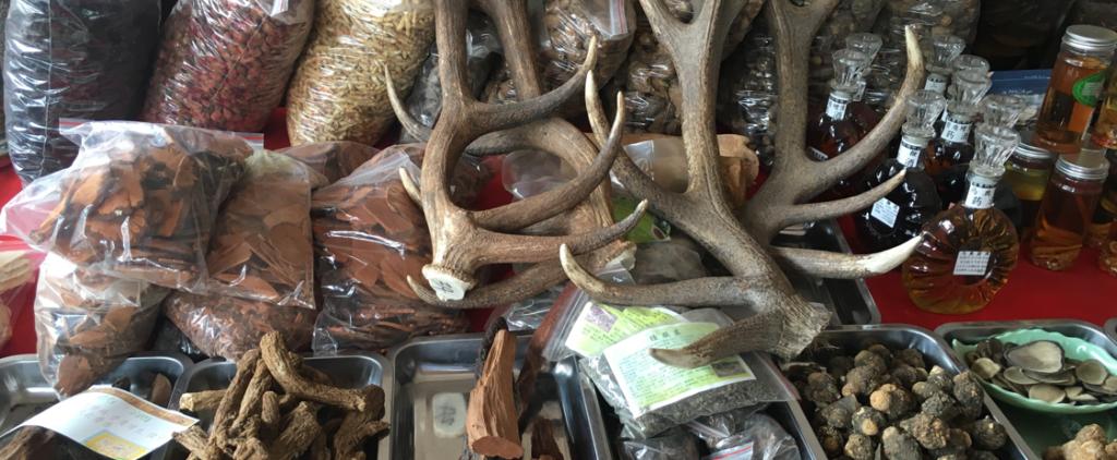 Rhino horns for sale online